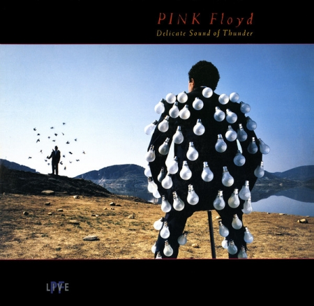 Pink Floyd - Delicate Sound Of Thunder (Duplo)